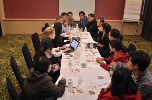 Danang Incubator development consortium